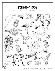 An Introduction to Pollinators for Kids Ages 9 - 12 Classroom Activities, Activities For Kids, Teacher Worksheets, Lesson Plans, New Books, Jr, History, Class Activities, Historia