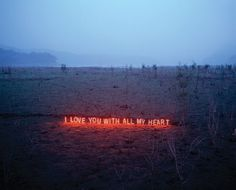 Neon messages in nature, by Lee Jung