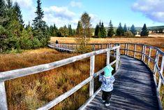 Czech Republic, Garden Bridge, Outdoor Structures, Travelling, Beautiful, Baby, Baby Humor, Infant, Bohemia
