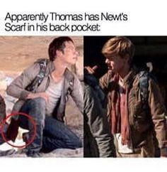 I just can't wait! Why is his scarf in his pocket they better not hurt newt in this one!!