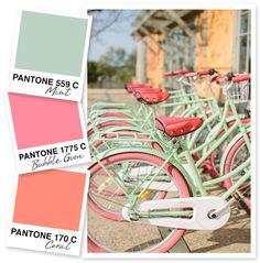 Coral Colour Palette, Coral Color, Pastel Colors, Mint Coral, Color Palettes, Coral Turquoise, Pastel Pink, Pastel Style, Coral Accents