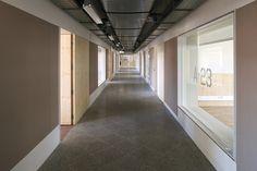 Escola Secundária Francisco Rodrigues Lobo - Leiria, Portugal / Inês Lobo Arquitectos