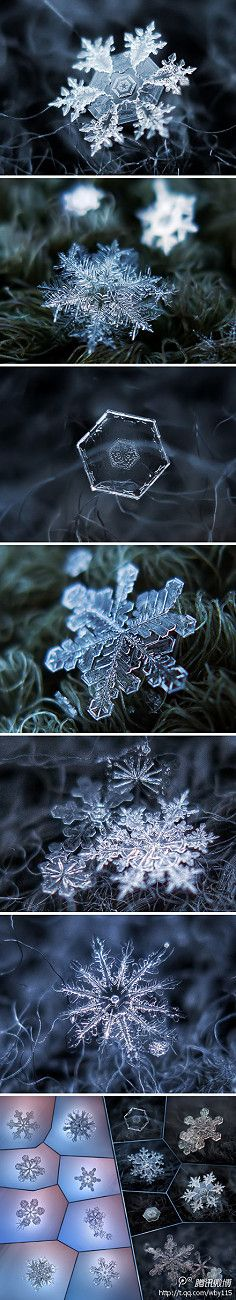 Inspiration - Snowflake crystals - so beautiful. No two are ever alike...