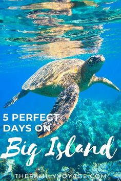 Hawaii (Big Island) Itinerary: 5 Days To See The Best Of The Island - The Family Voyage Hawaii Volcanoes National Park, Volcano National Park, Us National Parks, Hawaii Vacation, Beach Trip, Beach Travel, Canada Travel, Travel Usa, Zanzibar Beaches