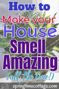 Make your home smell amazing by using these wonderful tips and tricks that will kill bad smells and fill your home with sweet aromas. Use these home smell tips and tricks to make your home smell good all the time. Diy Home Cleaning, Homemade Cleaning Products, Household Cleaning Tips, House Cleaning Tips, Natural Cleaning Products, Natural Cleaning Solutions, Natural Cleaning Recipes, Cleaning Mold, Spring Cleaning Checklist