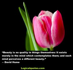 David Hume was a Scottish philosopher, historian, economist, and essayist. This post features some Inspirational David Hume Quotes.