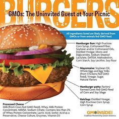 burger GMO ingredient breakdown - GMOs: the uninvited guest at your picnic Raw Juice Cleanse, Soylent Green, Gmo Facts, Real Food Recipes, Healthy Recipes, Healthy Food, Genetically Modified Food, Juice Fast, Natural Supplements