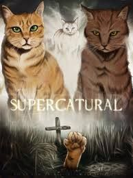 HA! It's a bit creepy how much those cats look like Sam and Dean though.... O.o