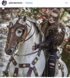 Pretty Horses, Horse Love, Beautiful Horses, Animals Beautiful, Horse Armor, Horse Bridle, Horse Halloween Costumes, Medieval Horse, Year Of The Horse