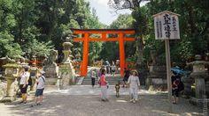 Good morning from Kasuga Shrine #travel #traveling #instatravel #instago #instagood #photooftheday #travelling #instapassport #instatraveling #agodalens #travelgram #travelingram #igtravel #japanwireless #ig_japan #japan_night_view #instagramjapan #icu_japan #igersjp #teams_jp_ #wu_japan #lovers_nippon #ptk_japan #jp_gallery #loves_nippon #pics_jp #far_eastphotography #bestjapanpics #phos_japan #japan_of_insta