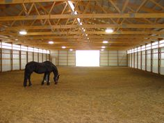 Inside a Cleary Riding Arena