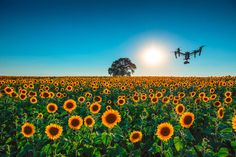 Dronefilm eller Dronefoto - Tar du høyde for nye muligheter? - http://www.nybrott.no/video/dronefilm-eller-dronefoto-tar-du-hoyde-for-nye-muligheter/