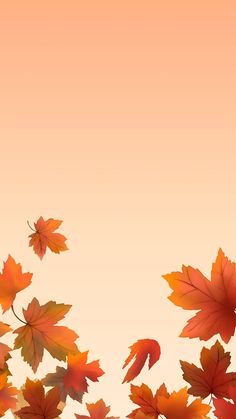 Fall Background Wallpaper, Leaves Wallpaper Iphone, Holiday Iphone Wallpaper, Autumn Leaves Wallpaper, Autumn Leaves Background, Cute Fall Wallpaper, Orange Wallpaper, Frame Background, Cellphone Wallpaper