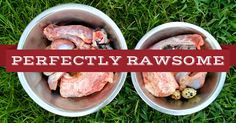 A complete raw feeding guide on how to create natural, homemade, raw meat diets for dogs in efforts to achieve a happy, healthy, and active companion for many years.