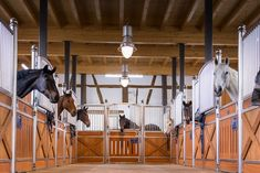 Horse Stalls, Track Lighting, Equestrian, Stainless Steel, Ceiling Lights, Ranch, Smooth, Houses, Future
