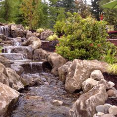 Gorgeous step-over water fall to private sitting area -  Paradise Restored Landscaping A Slope, Outside Fireplace, Sloped Yard, Pond Water Features, Traditional Landscape, Garden Pond, Natural Phenomena, Plantation, Exterior Design