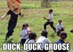 Duck duck Groose - LoZ Skyward Sword