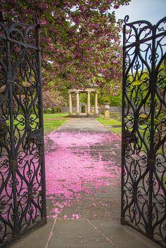 v0lt0rb:  Garden ~ by little~ny via Flickr