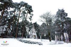 #wagrowiec #wielkopolska #piramida #napoleon #piramidałakińskiego #Polska #Poland #wągrowiec #las #forest #piramide #zima #winter #śnieg #snieg #snow Fot. Ł. Cieślak