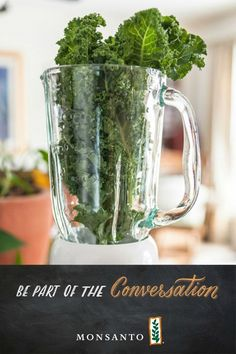 Kale is a hot item in grocery stores—and a hot topic for food bloggers who wonder if the leafy green all it's cracked up to be. See where one licensed #Monsanto dietician stands on the matter.