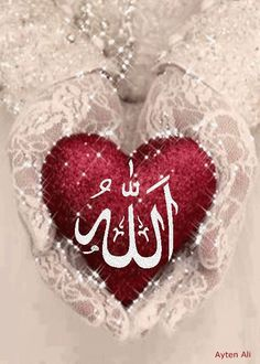 rashk e gull Allah God, Allah Islam, Islam Quran, Islamic Images, Islamic Pictures, Islamic Art, Allah Wallpaper, Islamic Wallpaper, Islamic Calligraphy