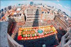 The Carpet of Flowers Festival - Grand Place, Brussels - Google Search