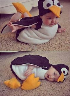 Penguin baby_Levi may need this!!