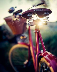 bicycles Brooks saddle - depth of field shot