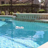 Superior Pools Custom Shape Swimming Pool & Spa