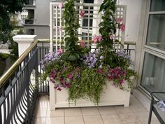 balcony garden | there is much to know about balcony gardening before starting a ...