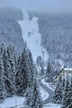Ski slopes in Poiana Brasov resort, Romania . If you are looking for a ski… Albania, Winter Family Vacations, Places To Travel, Places To Visit, Brasov Romania, Visit Romania, Best Ski Resorts, Ski Slopes, Ski Holidays
