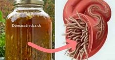 The Best Antibiotic, Natural and Removes Every Infection and Parasite! Natural Cures, Natural Healing, Natural News, Natural Foods, Herbal Remedies, Health Remedies, Healthy Drinks, Healthy Tips, Healthy Food