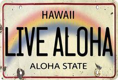 Live Aloha License Plate - Hawaiian Vintage Postcard