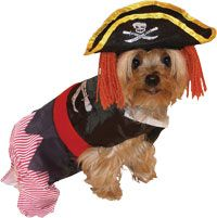 Pirate Pet Costume Dog Costumes