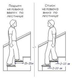 стандарт лестница
