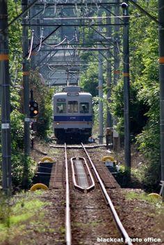 和歌山電鐵ができるまでの思い出話 第11話|blackcatのブログ