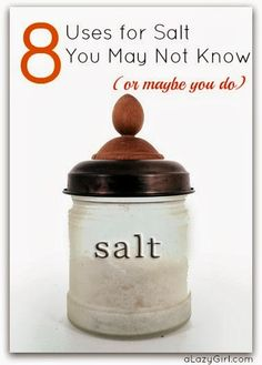 Salt is for more than just food.. Find out 8 more uses for it.  This blog also has a recipe for homemade Mayo