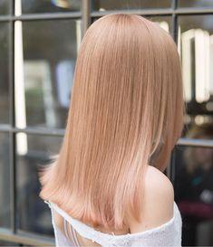 Blond Rose, Soft Blonde Hair, Rose Gold Hair Brunette, Champagne Blonde Hair, Hair Dye Colors, Hair Color, Peach Hair, Strawberry Blonde Hair, Honey Hair
