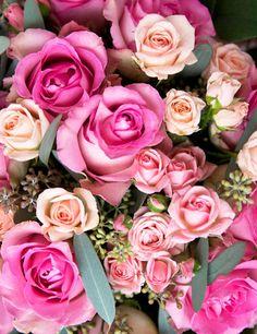 BEAUTIFUL ROSES AND FLOWERS - Koleksiyonlar - Google+