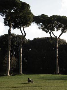 The Park Villa Ada, Rome