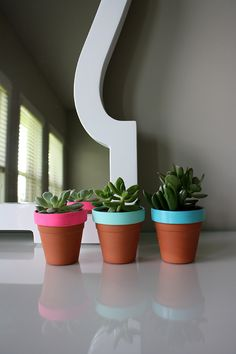 Terra Cotta turned chic! These mini succulent pots will brighten up any space!