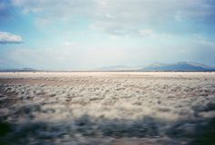 new mexico prairie. i want to be here