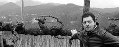 Cantina del Barone - Siamo a  Cesinali (AV) terra di nocciole, in Irpinia a ridosso dei monti Terminio e Partenio. Qui, da terreni di origine vulcanica ricchissimi di minerali e con un adeguato contenuto di scheletro, con una esposizione a mezzogiorno che regala ai terreni una solarità perfetta, in binomio con l'influenza del Monte Terminio e del Monte Partenio, il Fiano trova il suo habitat ideale ...