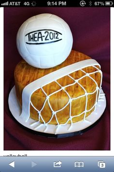 volleyball cake pic.  make for C?