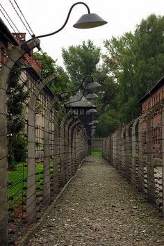 "I've wanted to visit Auschwitz Birkenau in Poland since reading ""Night"" in high school"