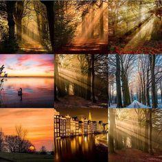 My Bestnine 2017.  Thanks for the nice support   #uwn_holland  #super_holland  #wonderful_holland  #instanetherlands  #holland_photolovers  #dutch_connextion  #ig_discover_holland  #bergenopzoom  #global_hotshotz  #allbeauty_addiction  #gurushots  #bestnine2017  #theworldshotz  #ig_world_colors  #heart_imprint  #gottolove_this  #worldbestgram  #fotocatchers  #fotofanatics_nature_  #nature_of_our_world  #fiftyshades_of_nature  #pocket_trees  #bd_trees  #tree_magic  #tree_brilliance…