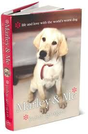 Marley and Me. Great book, but I don't think I could read it again. Cried like a baby.