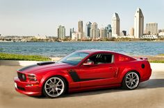 Request of pics w/black reverse hockey stick stripes - The Mustang Source - Ford Mustang Forums 2006 Mustang Gt, Ford Mustang Forum, Roush Mustang, Ford Mustang Shelby Cobra, Mustang Fastback, Mustang Cars, Car Ford, Ford Gt, Mustang Stripes
