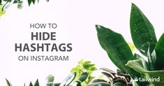 How to Hide Hashtags on Instagram like a pro. Auto post with your hashtags in the first comment! #tailwind #instagramtips #instagrammarketing Instagram Schedule, Instagram Tips, Instagram Feed, Social Marketing, Online Marketing, Hashtag Finder, Create A Hashtag, List Of Hashtags