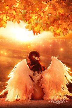 Autumn Dreams - анимация на телефон №1351123